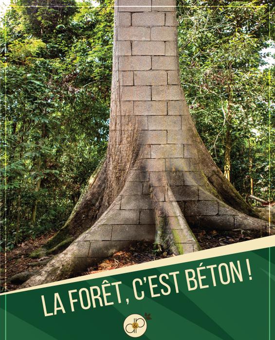 ,  - La Forêt, c'est Béton !  - Domaines et Patrimoine