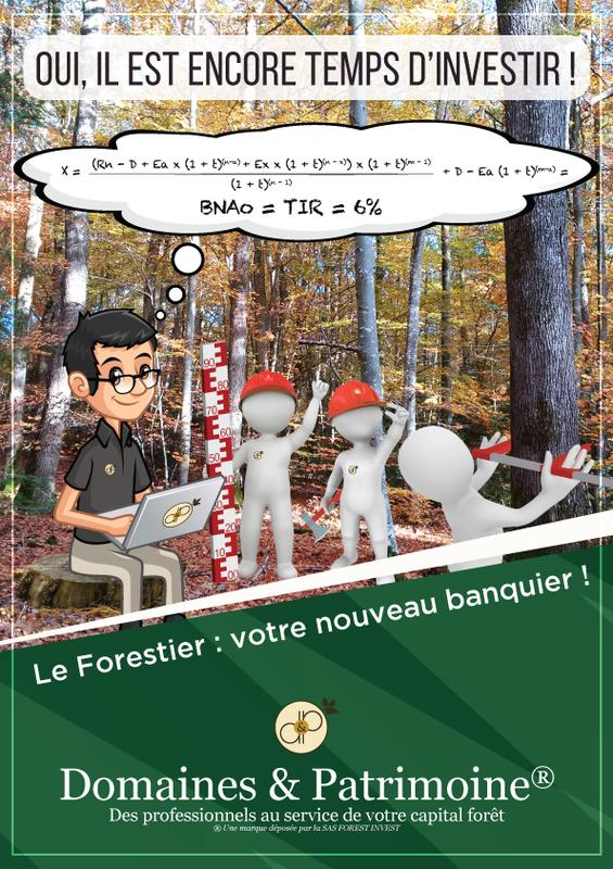Le Forestier : votre nouveau banquier - Domaines et Patrimoine