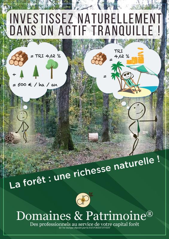 La forêt : une richesse naturelle !  - Domaines et Patrimoine